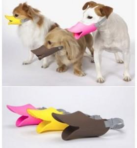 Museruola per cani.