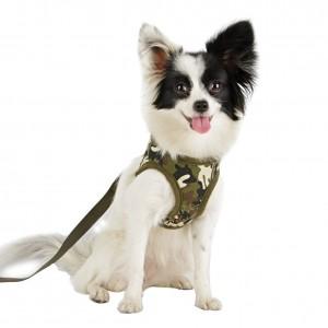 pettorine per cani.jpg.1