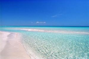 spiagge per cani puglia