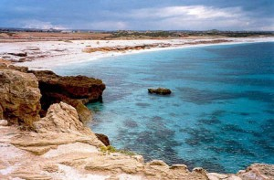Spiagge per cani Campania