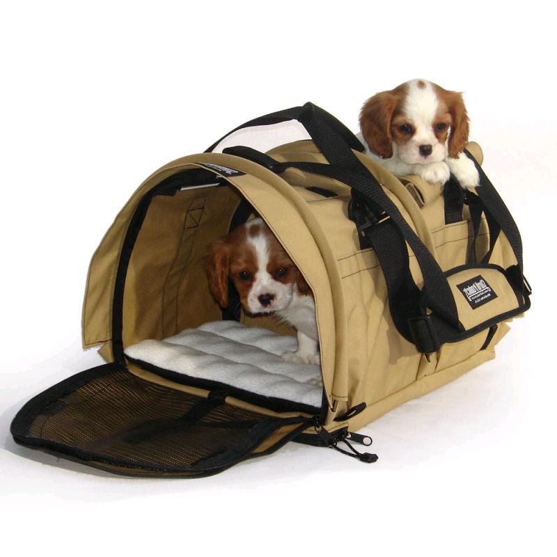 trasportini per cani piccoli tutte i modelli