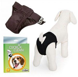 mutande per cani