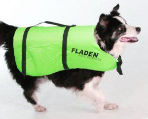 salagente per cani