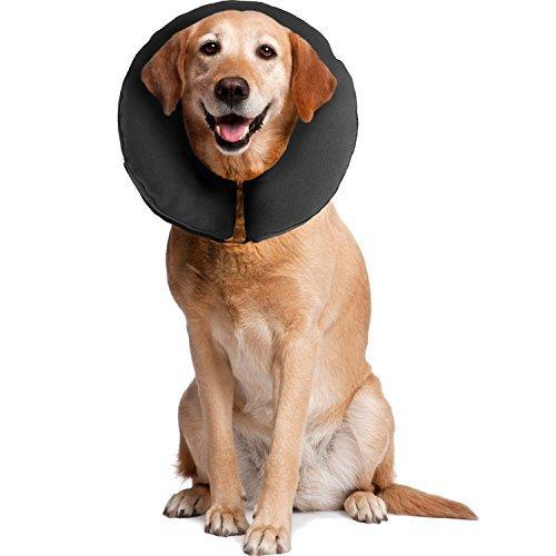 Collare Elisabettiano Morbido Prezzo.Collare Elisabettiano Per Cani Proteggilo Da Se Stesso