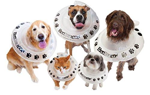 Vasca Da Bagno Per Cani Prezzi : Collare elisabettiano per cani proteggilo da se stesso