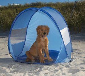 tenda per cani