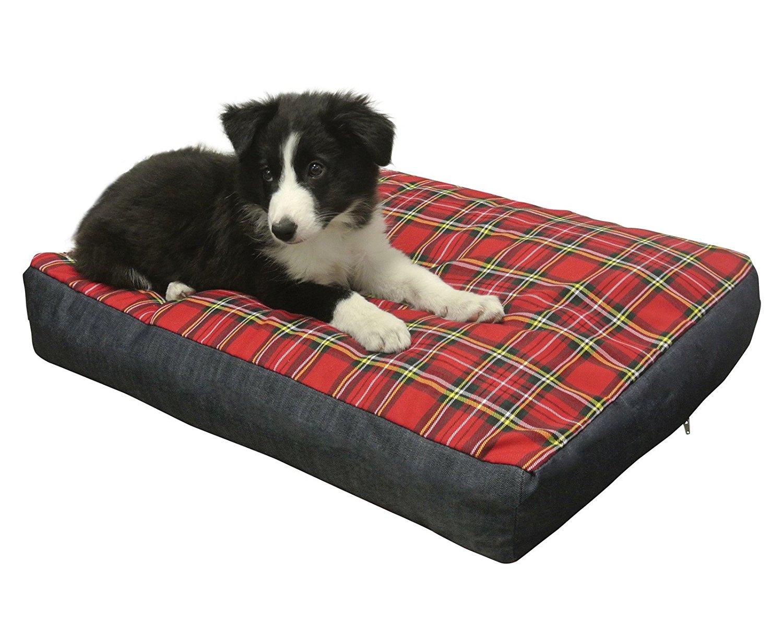 Cuscini Ortopedici Per Cani.Letto Ortopedico Per Cani Anziani Per Un Sonno Ristoratore