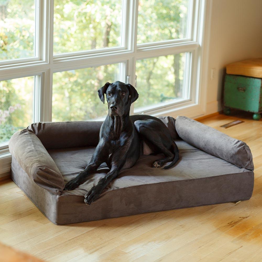 Letto ortopedico per cani anziani per un sonno ristoratore - Posizioni nuove a letto ...
