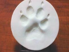 Kit Impronte zampe | Conserva per sempre l'impronta del Tuo Peloso