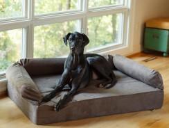 Letto ortopedico per cani anziani | Per un sonno ristoratore