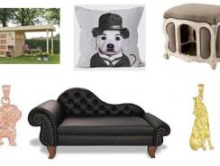 Luxury Dog | Scegli solo il meglio per il tuo cane